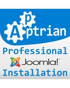 Professional Joomla Installation