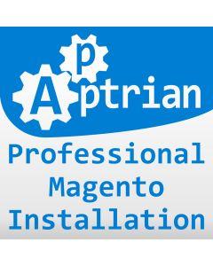 Professional Magento Installation