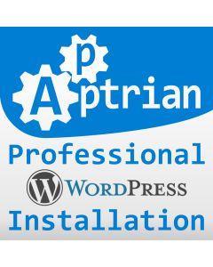 Professional WordPress Installation